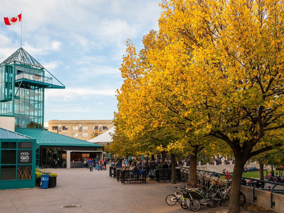 The Four Seasons: Autumn - The Forks, photo by Salvador Maniquiz