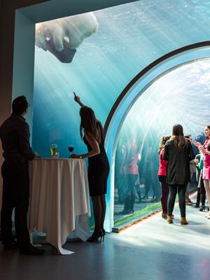 Unique Venues at Assiniboine Park and Zoo - representative image